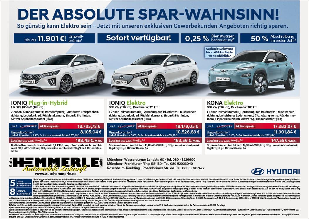 Auto Hemmerle Spar-Wahnsinn